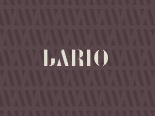 Proposta di design per Lario. <i>Brand identity, marchio e comunicazione</i>