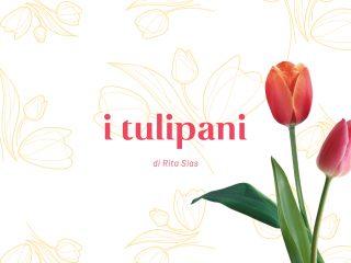 I tulipani, di Rita Sias