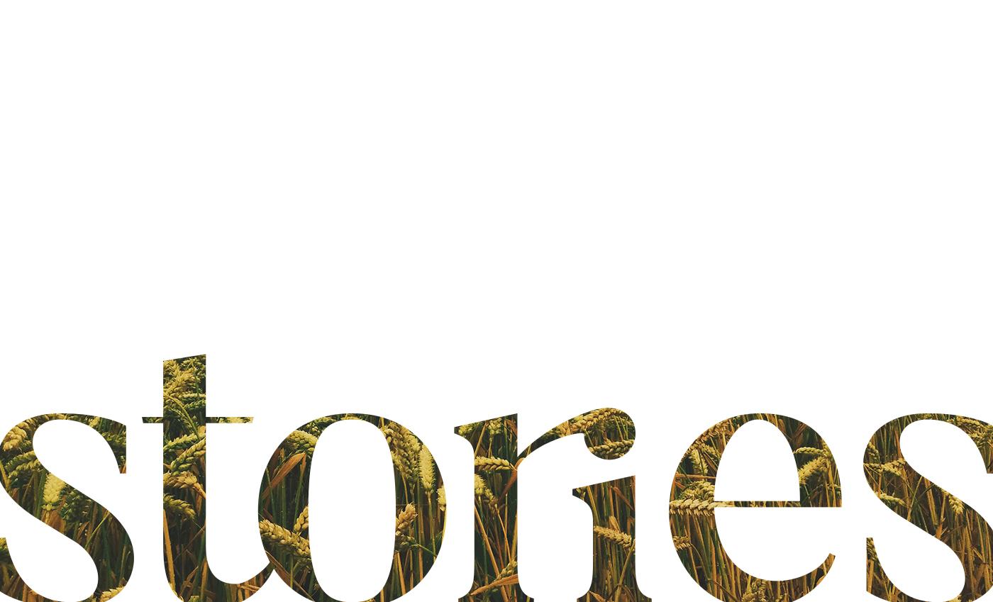 Utilizzo tipografico del logo.