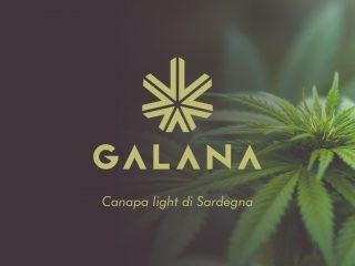 Galana, la canapa light di Sardegna